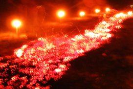 Glutteppich Feuerlauf 30 Meter